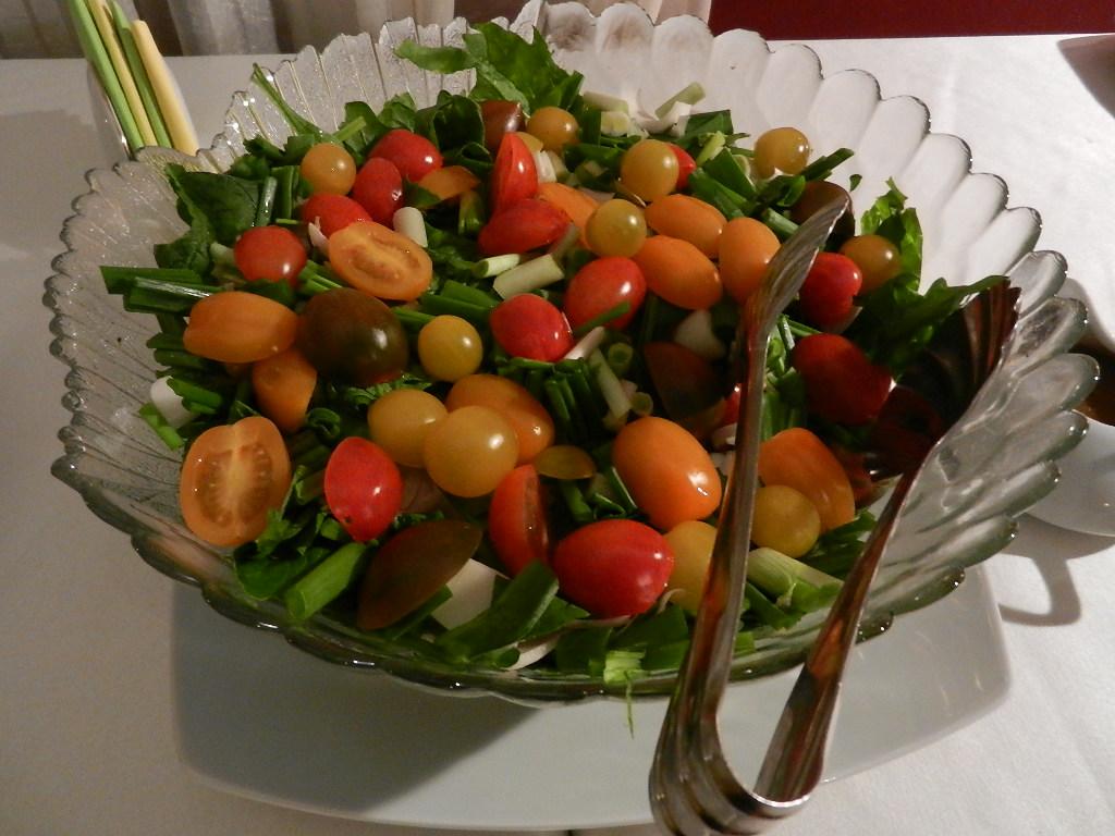 salata-Satya