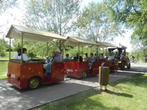 Trenulețul din Parcul Titan