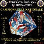 Campionatele naționale de gimnastică – București 2014