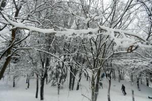 Cum se vede iarna din cartierul Titan