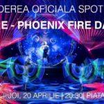Spotlight-Festival