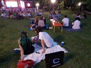 Cum a fost SummerWell 2017?